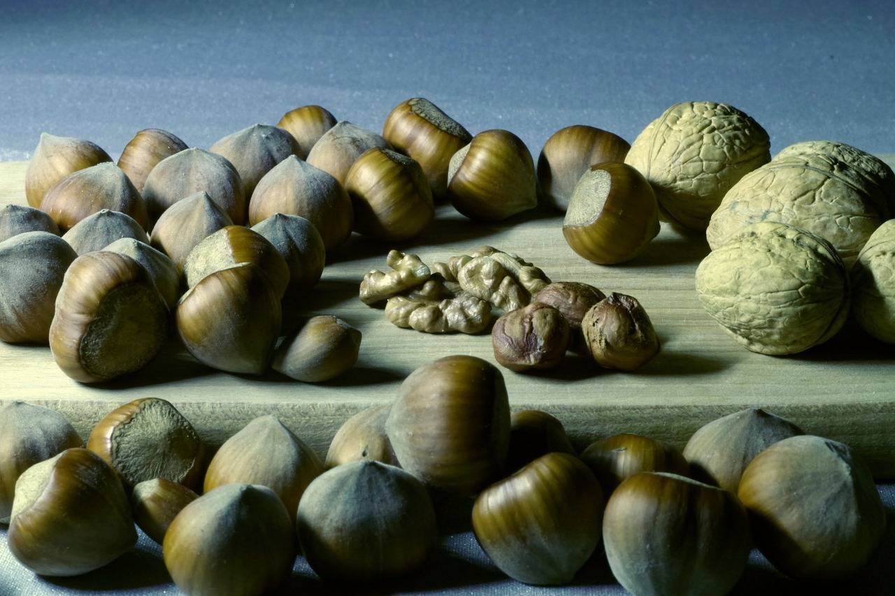 Hepatopatiile cronice – beneficiile tratamentului adjuvant cu silimarină